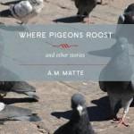 La page couverture du receuil de nouvelles Where Pigeons Roost, avec une photo de pigeons se promenant sur un pavé ensoleillé.